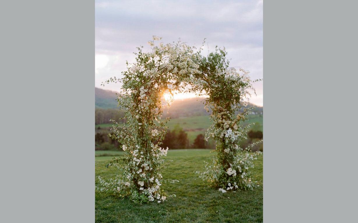 Southern_Blooms_4opti